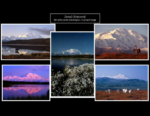 Denali Note Cards