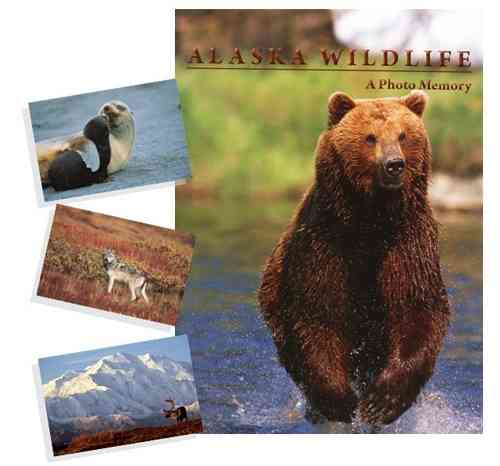 ALASKA WILDLIFE – A PHOTO MEMORY BOOK