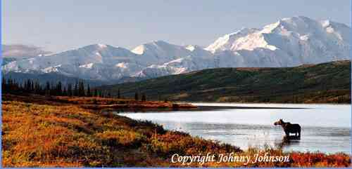 """WILDERNESS OF DENALI"""